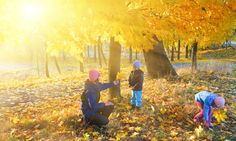 Denmark to have second warmest autumn ever
