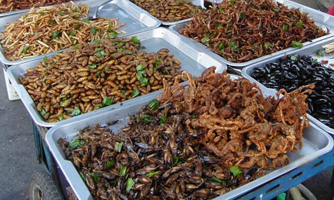 Danish supermarket sells insects – for two days