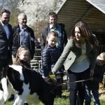Crown Princess Mary and her children were among the thousands of Danes who came out to see the organic cows set free. Photo: Simon Skipper/Scanpix
