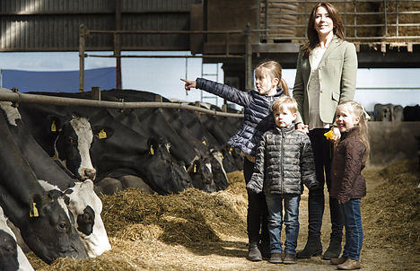 Cows and royals mix at Denmark's Organic Day
