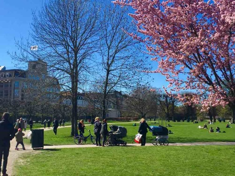 Copenhagen blooming with spring colours
