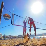 Gran Canaria: Where Swedes go to work (and play)