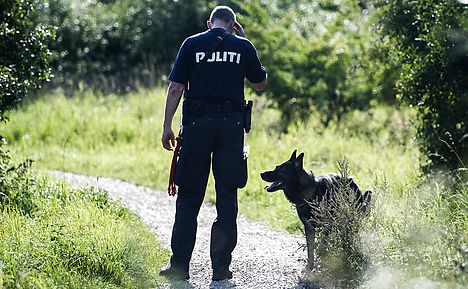 Body parts of dead Danish gangster found in forest