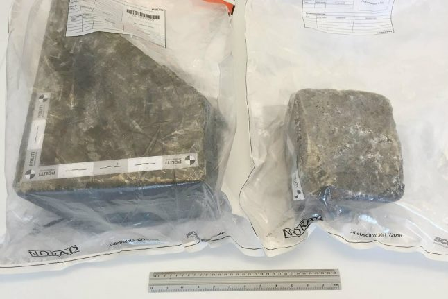 Police in Denmark hunt for 'serial criminal' behind rocks dropped on to motorway traffic