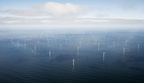 Danish government proposes giant 800MW wind farm