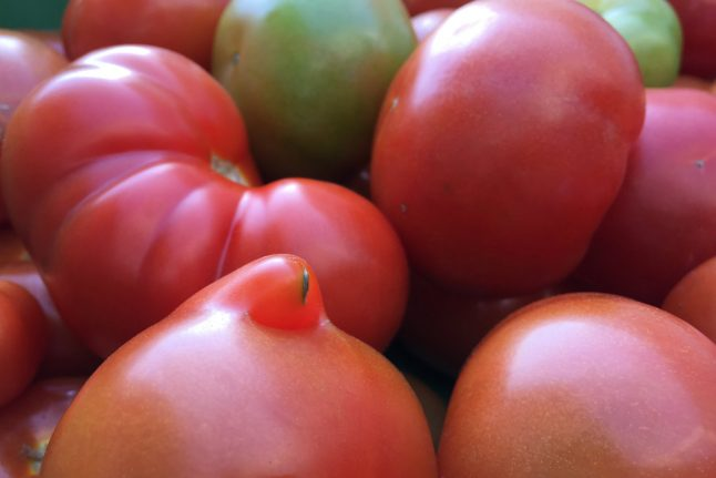 Danish producer saves 75 tonnes of 'ugly' tomatoes