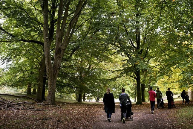 'Indian summer' to replace cold and rain in Denmark this week