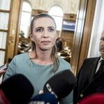 Denmark opposition leader rejects calls for skilled labour from outside EU