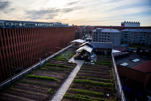 Denmark's first rooftop farm faces closure