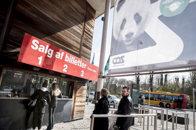 Chinese pandas arrive in Denmark to mixed response