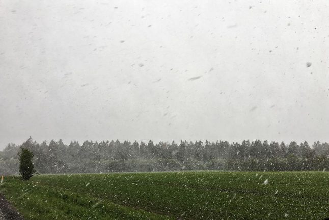 Weather: mixed, but not much sun this week in Denmark