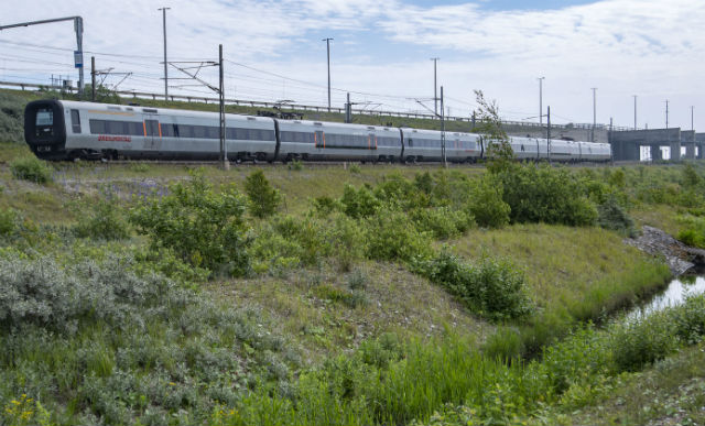 Passenger brings Denmark-Sweden train to emergency stop after realizing he was 'going the wrong way'