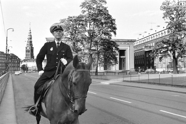 Danish police struggle for hooved recruits to form new horse unit