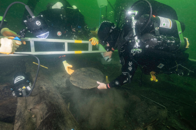 How a 500-year-old sturgeon was found in a Scandinavian royal shipwreck