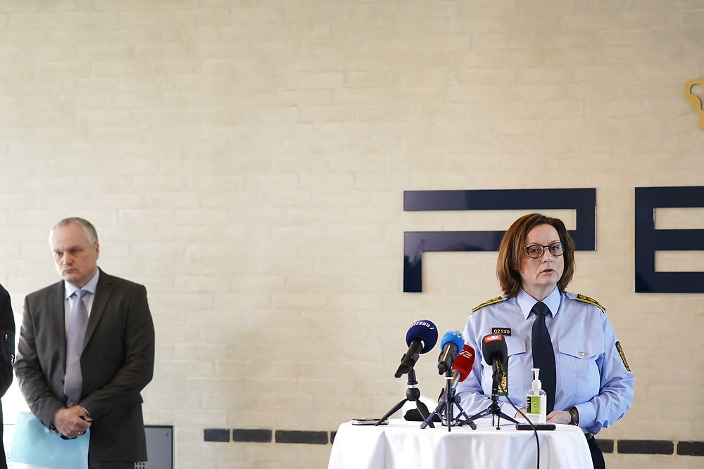 Denmark arrests suspects in plot linked to militant Islamism