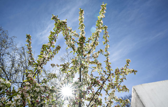 Will Easter bring spring weather to Denmark?