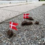 Why are Danish people sticking the national flag in dog poo?